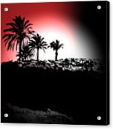 Palms Black White Red Acrylic Print