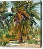 Palms In Key West Acrylic Print
