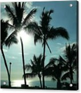 Palms In Silhouette Acrylic Print