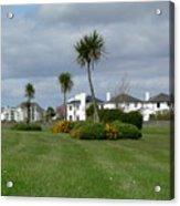 Palms Of Ireland Acrylic Print