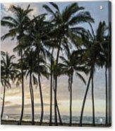 Palms Of Kauai Acrylic Print