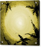 Palms Old Acrylic Print