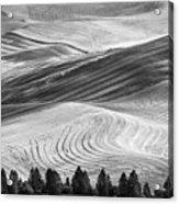Palouse Field 2740 Acrylic Print