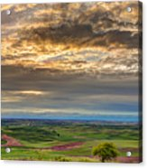 Palouse Sunset Acrylic Print
