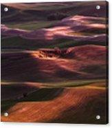 Palouse Undulation Acrylic Print
