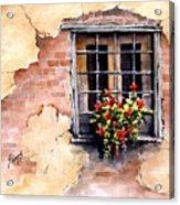 Pampa Window Acrylic Print by Sam Sidders
