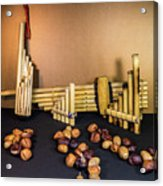 Pan Flutes And Buckeyes Acrylic Print