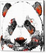 Panda Bear Art - Black White Red - By Sharon Cummings Acrylic Print