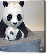 Pandaroras Box Acrylic Print