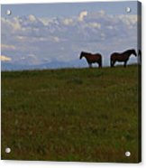 Panorama Of Alberta Acrylic Print by Al Bourassa