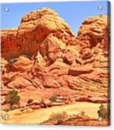 Panoramic Coyote Buttes Landscape Acrylic Print