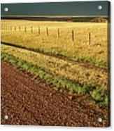 Panoramic Prairie Storm Canada At Sunset Acrylic Print