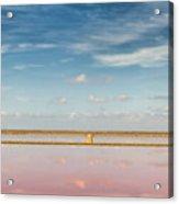 Panoramic View Of Saline Drip - Salin De Giraud Acrylic Print