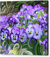 Pansey Flowers And Swirls  Acrylic Print