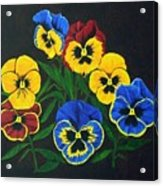 Pansy Lions Acrylic Print