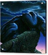 Panther On Rock Acrylic Print