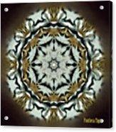 Panthera Tigris Kaleidoscope Acrylic Print