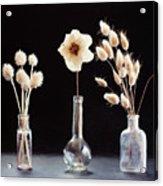Paper Flowers Acrylic Print