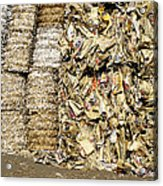 Paper For Recycling Acrylic Print