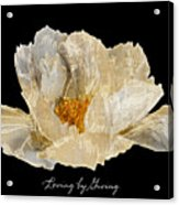 Paper Peony Loving By Giving Acrylic Print