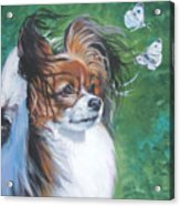 Papillon And Butterflies Acrylic Print