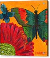 Papillon Jaune Acrylic Print