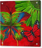 Papillon Rouge Acrylic Print