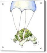 Parachute Turtle Acrylic Print