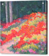 Parade Of The Poppies Acrylic Print