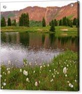 Paradise Basin Acrylic Print