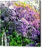 Paradise Hills Acrylic Print