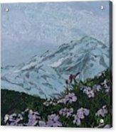 Paradise Mount Rainier Acrylic Print