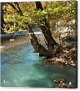 Paradise River Acrylic Print