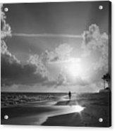 Paradise Walk Acrylic Print