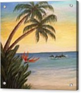 Paradise With Dolphins Acrylic Print