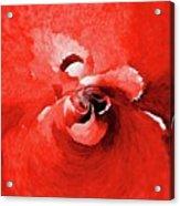 Paradox 7 Acrylic Print