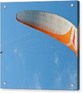 Paraglider In The Blue Acrylic Print