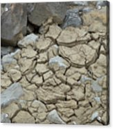 Parched Earth Acrylic Print