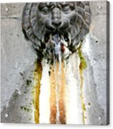 Paris - Waterfountain Acrylic Print