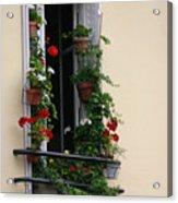 Paris - Window 2 Acrylic Print