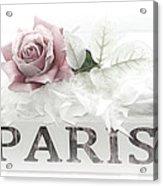 Paris Dreamy Pastel Pink Roses On Paris Book - Romantic Paris Roses And Books Shabby Chic Art Acrylic Print