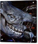 Paris Gallery Of Paleontology 2 Acrylic Print