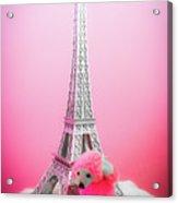 Paris Poodle Acrylic Print