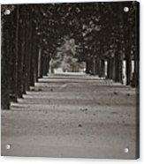 Paris, Sunday Morning Acrylic Print