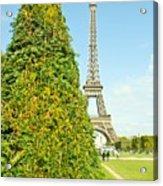 Paris Towers Acrylic Print