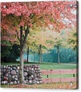 Park In Autumn/fall Colors Acrylic Print