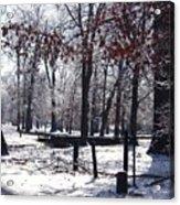Park In The Snow Acrylic Print