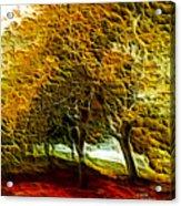 Park Landscape Acrylic Print
