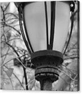 Park Light Acrylic Print