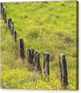 Parker Ranch Fence Acrylic Print